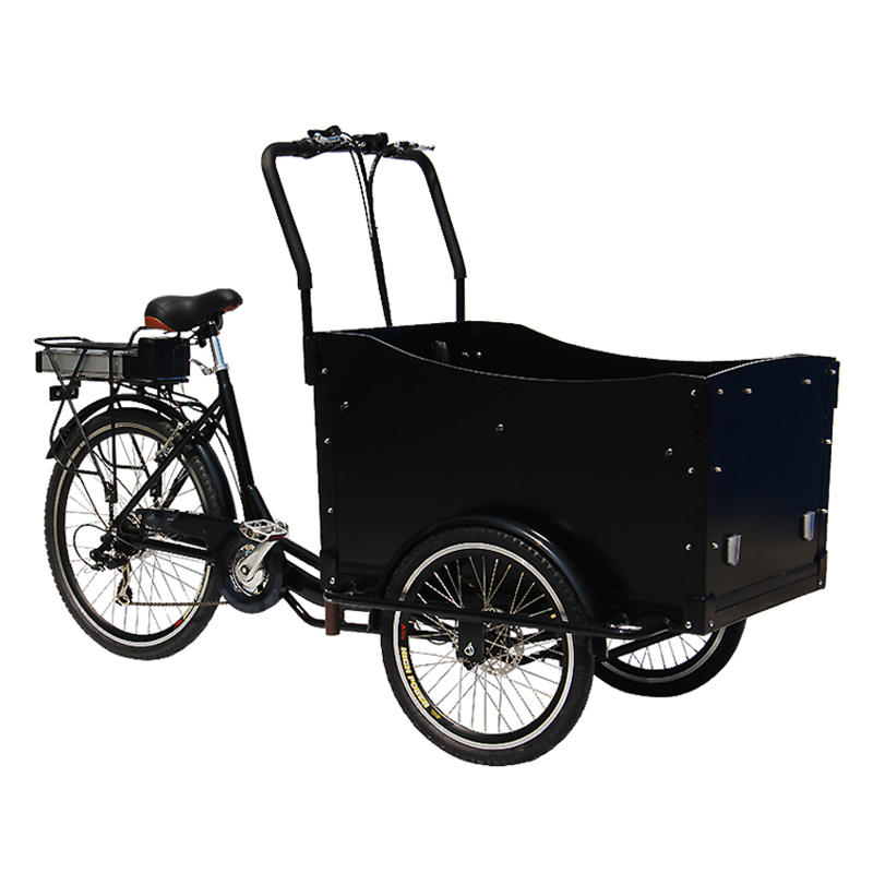 Factory Price Sale Cargo Bike Electric Cargo Bicycle Food Bike In China