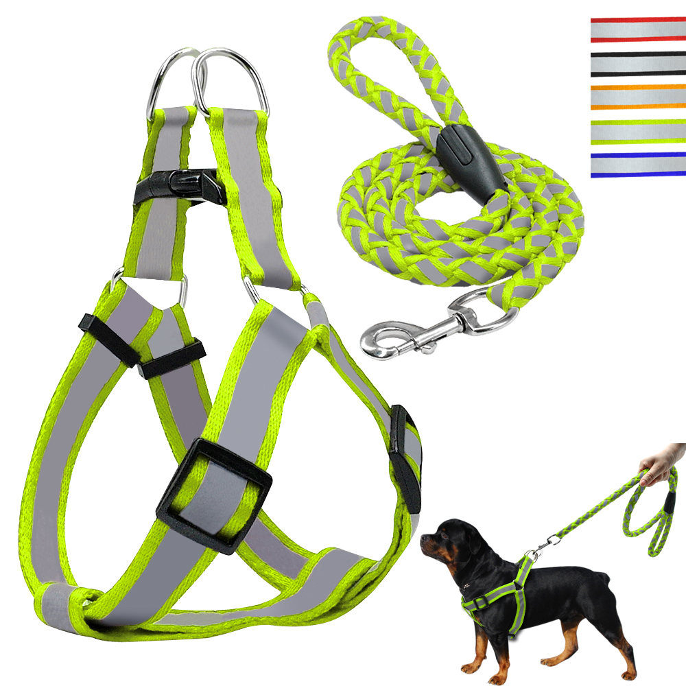 Small Dog Walking Harness