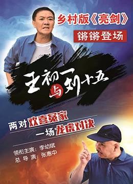 《王初一与刘十五》2017年中国大陆剧情,喜剧,爱情电视剧在线观看