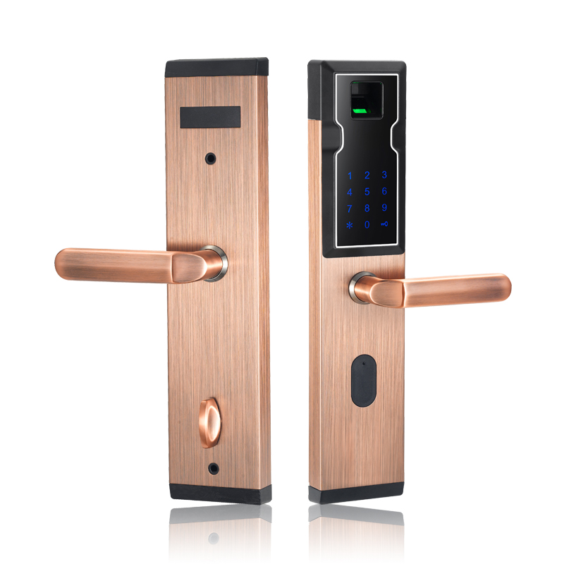 Electronic Door Lock Security Safe Digital Keyless Smart Combination with Keypad Password Biometric Fingerprint Sensor Lock Door smart door lock electronic fingerprint door lock control digital keyless door lock biometric keypad double sided door lock