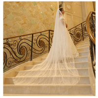 Sparkly Wedding Veils Sequins Bling Bling Shinning Bridal Veils Long 3 Meters Bridal Veils In Stock Real Wedding Accessories