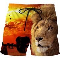 LOVE SPARK Mens Street Lion Print Summer Shorts S To 6xL 3D Fast Dry Light Yoga