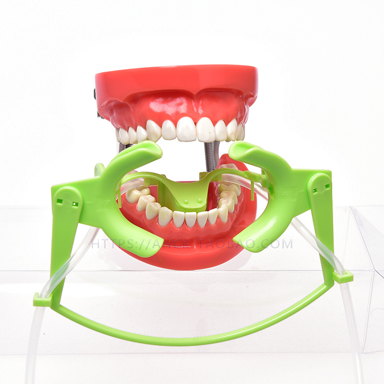 ФОТО New 1 Pcs Orthodontic Cheek Retractor with Salive Suction Function Mouth Opener Suit for Teeth Whitening and Orthodontic