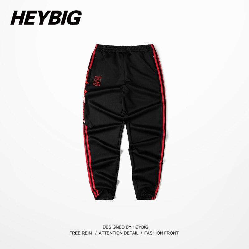 Мужские штаны , 2017 hip hop