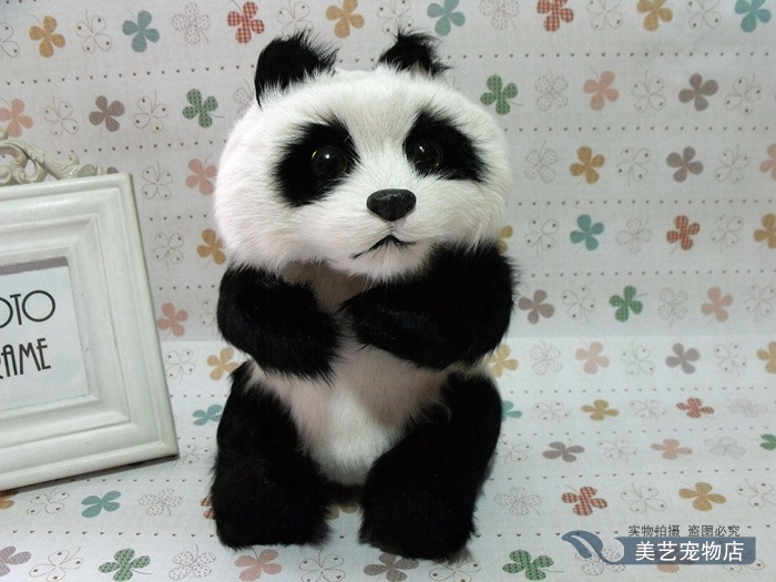 simulation panda model,polyethylene&fur 16x14x22cm sitting panda handicraft toy home decoration Xmas gift b3850