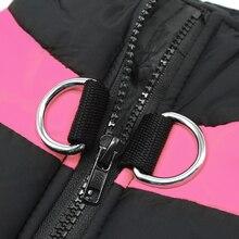 Beautiful, warm, waterproof puppy vest / jacket