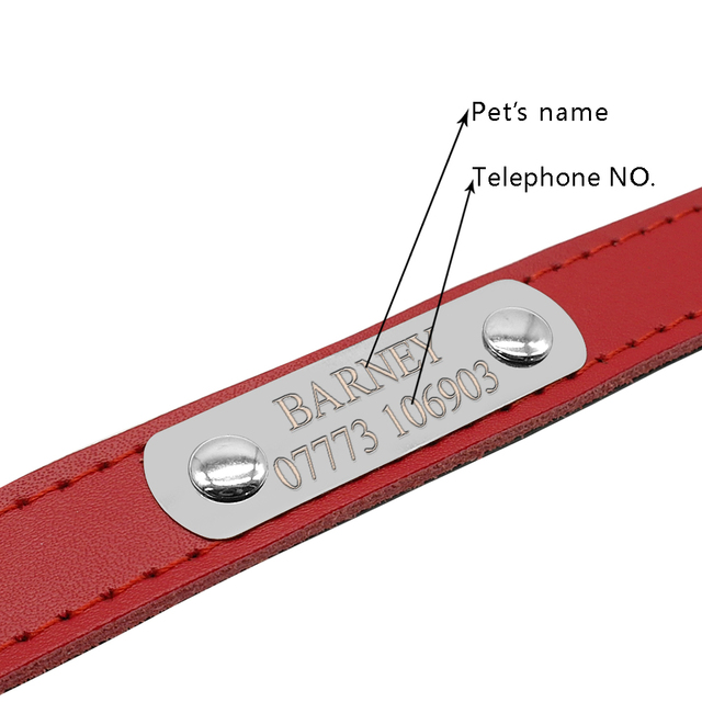 Leather Personalized Cat Collars 1