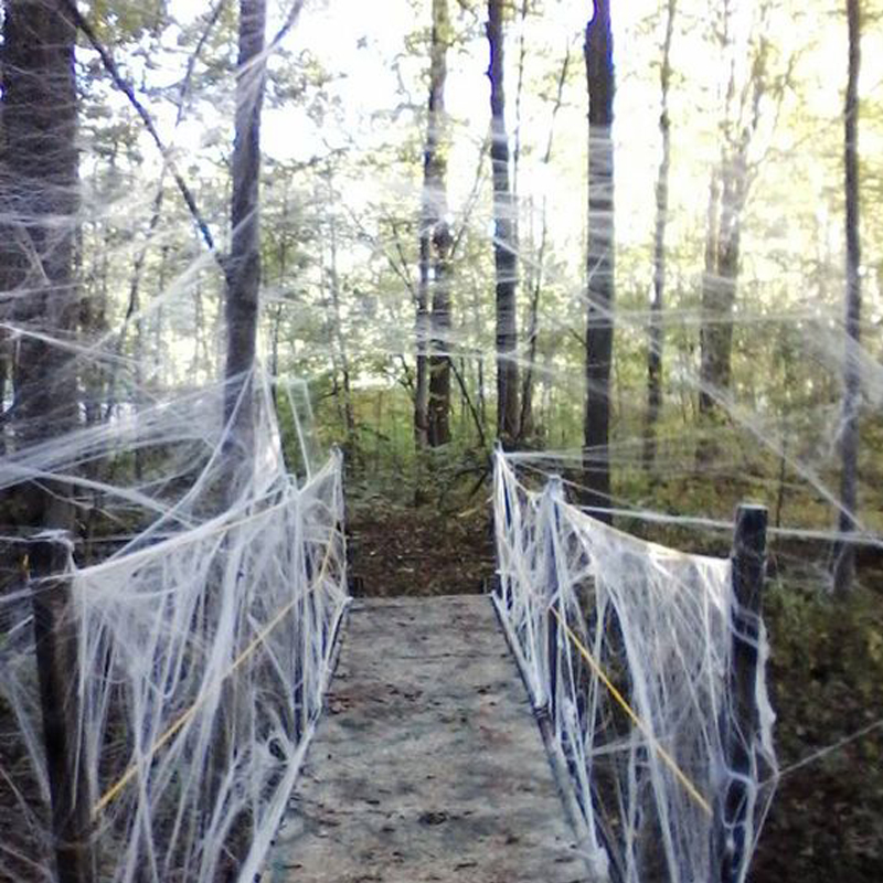 buy 3 bags get 1 free halloween strechable spider web 40g with spiders white webbing for halloween decorations - Halloween Decorations Spiders