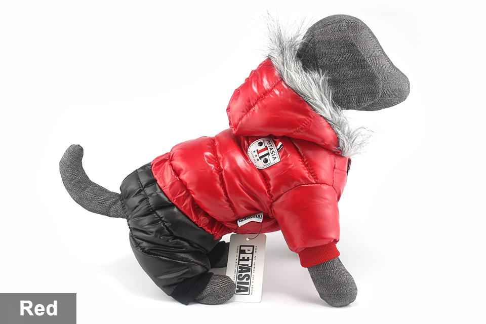 Chaqueta impermeable de invierno para perro 16