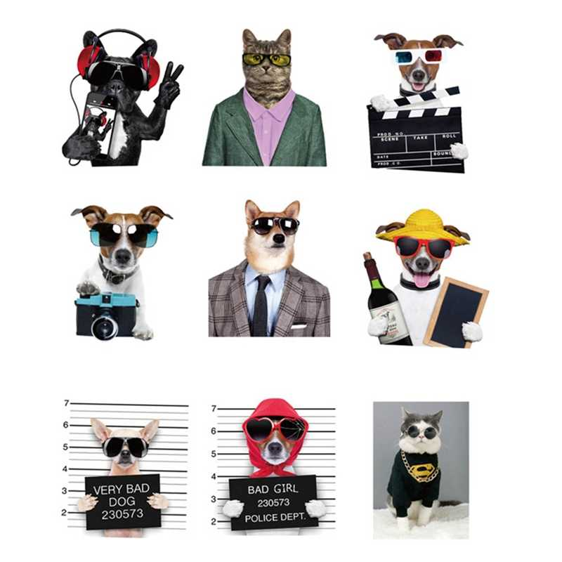 38 adet/takım Sevimli Kawaii Güneş Gözlüğü Kediler ve Köpekler Hayvan Tarzı Graffiti Çıkartmalar tekerlekli çanta Bagaj PVC Su Geçirmez Serin Çıkartmalar