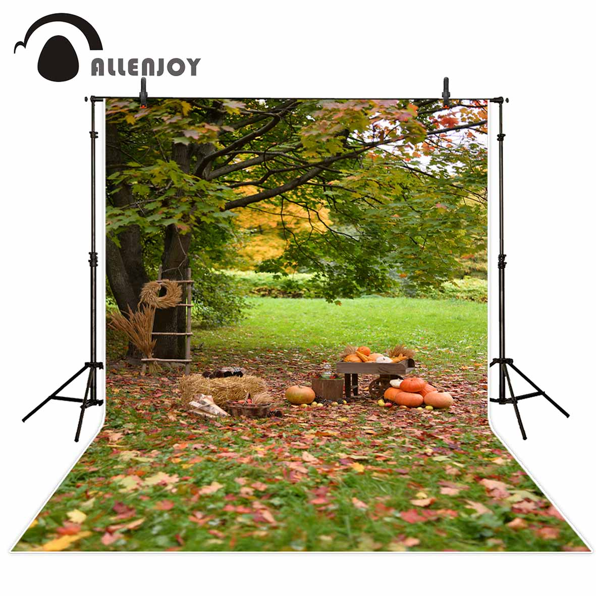 Allenjoy photography backdrops Pumpkin countryside meadow woods ladder children background backgrounds for photo studio