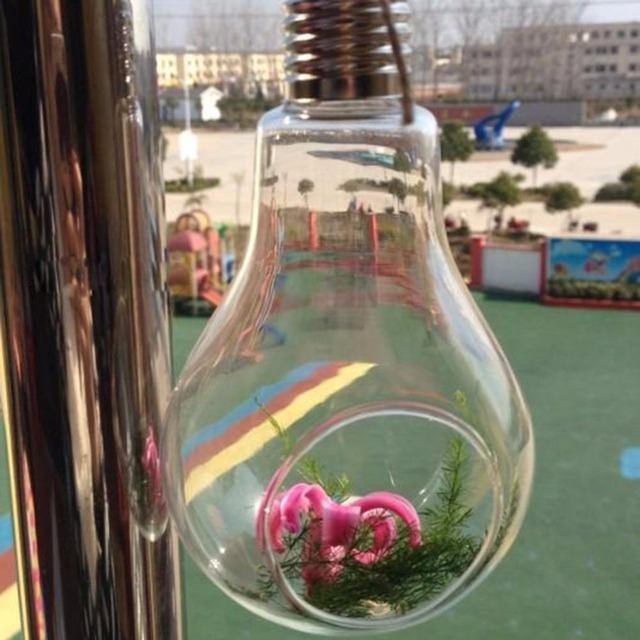 Glass Bulb Lamp Shape Flower Water Plant Hanging Vase Hydroponic Container Terrarium Glass Home Office Decoration