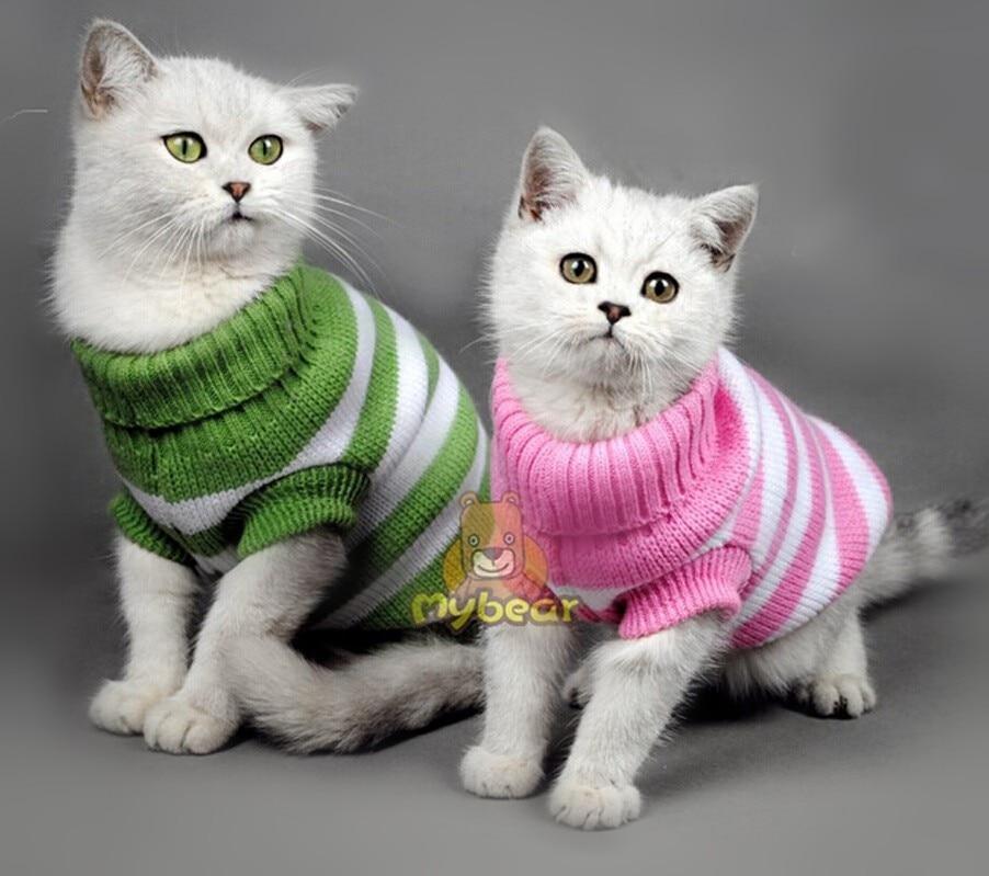 Cat clothes online