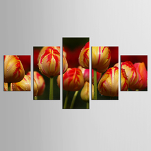 5 panel garden tulip mural art home decoration living room canvas printing modern painting XL-FJ312-1
