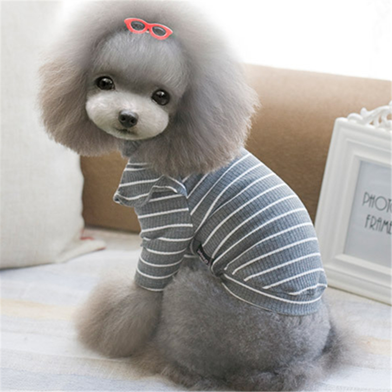 girl dog clothes (7)