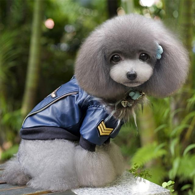 dog leather jacket