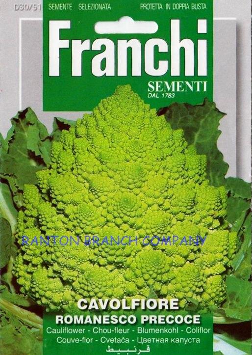 Supply 1 Original Pack around 1800pcs Franchi Cauliflower seeds green cauliflower vegetable seeds for home garden