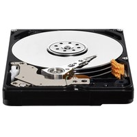 Western Digital WD AV 25 2.5 inch SATA hard drives, 2.5inch, 500 GB, 5400 RPM,Serial ATA III HDD