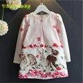 Varejo 2017 Primavera 100 algodão de alta qualidade fresco coelho girl princess dress 2-7A