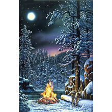 diamond painting Snowy night,diamond embroidery 5d ,diamond  new
