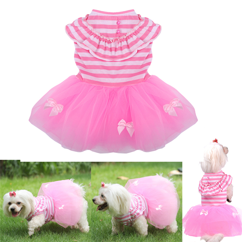 Online Shop for Popular sweet dogs from Chaquetas para perro