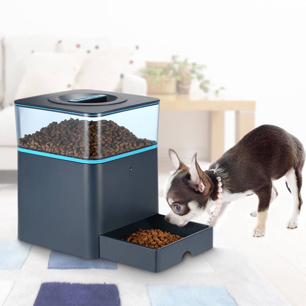feeder for youtube dog feeders watch fully automatic dogs