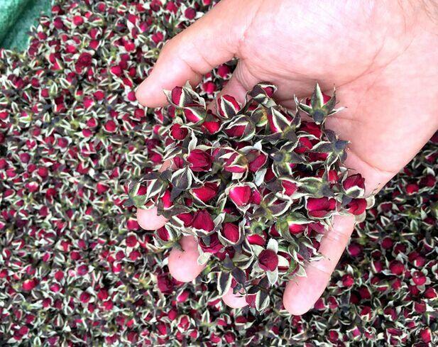 China Yunnan Rose bud Tea