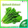 Produtos de Cuidados de saúde de Espinafre Extrato Da Cápsula 500 mg * 300 pcs