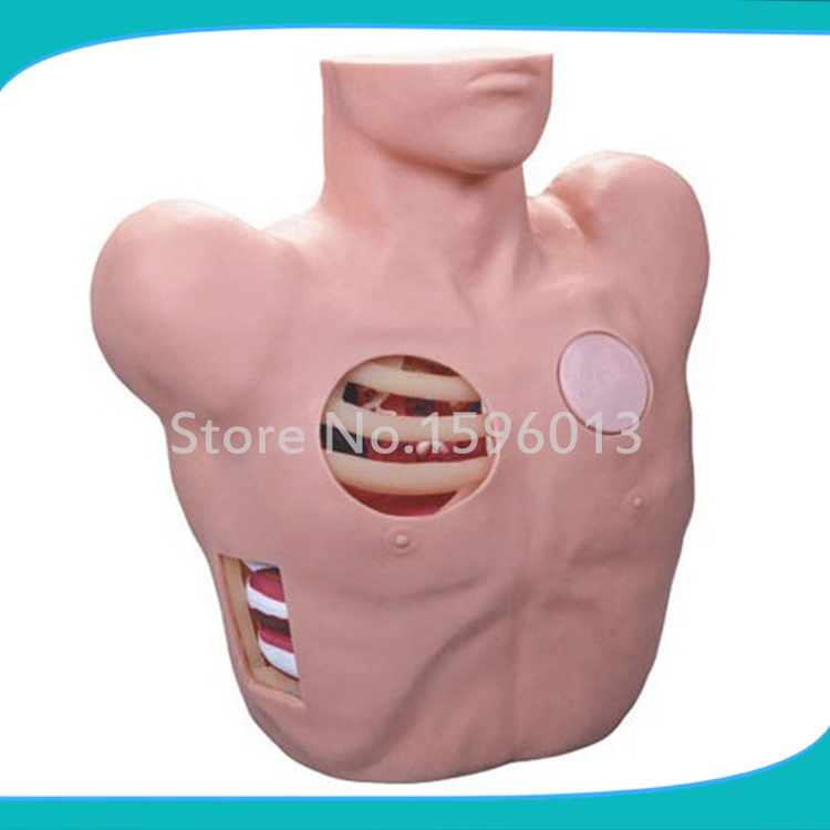 Pleural Drainage Simulator, Thoracentesis Drainage Model,Chest drainage Nursing Model