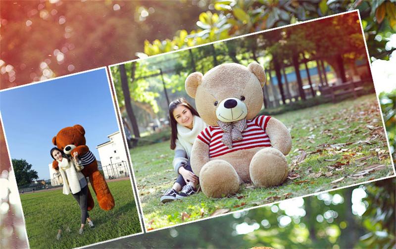 Bear-(12)_02