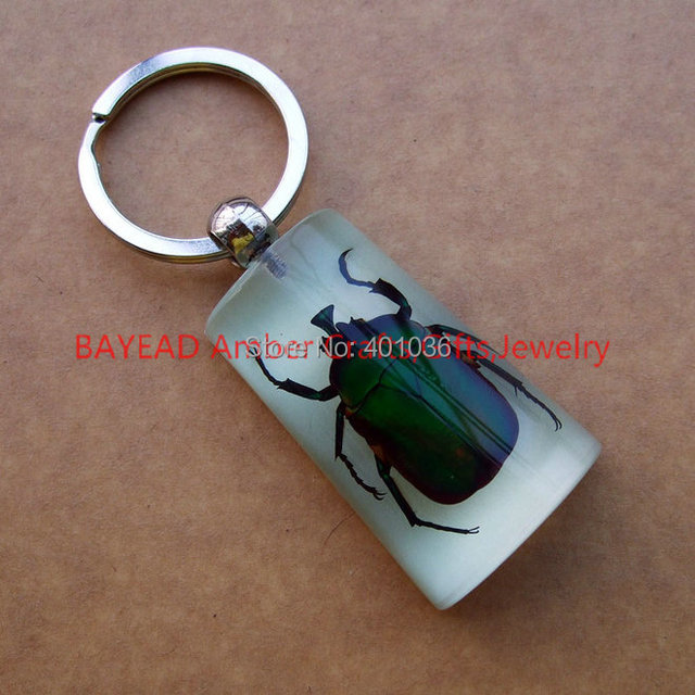Real Green Chafer Beetle In glow Resin Keychains Insect Keyring Bug  Keychains 45 29 15MM Party Gift 0b37f4515d41