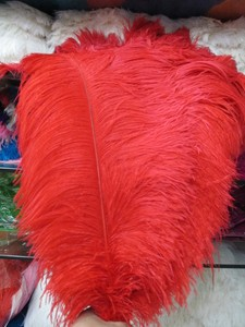 Image 5 - Оптовая продажа, 10 шт., качественные натуральные белые перышки страуса с большим полюсом, 45 50 см/18 20 дюймов, свадебные, карнавальные, сценические выступления