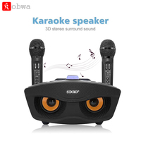 Home Karaoke Machine With Bluetooth Wireless Double Microphone Party KTV Systems for iPhone Support TF Card AUX FM U Disk