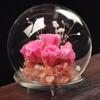 European DIY Creative Transparent Spherical Glass Vase Cover Decorative Micro Landscape Cover Vase For Home Glass