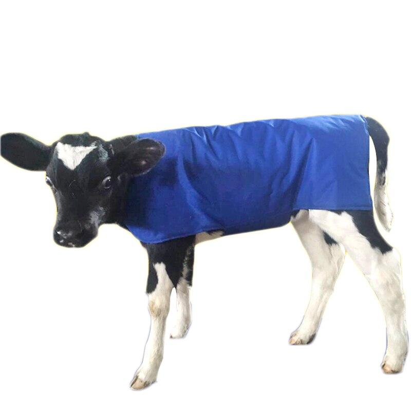 Mucca pelle di Vitello Abbigliamento a prova di Freddo di Qualità della maglia Panno di Cotone gilet gilet per il Bestiame Piccolo Cowl Bovini Caldo armatura Attrezzature Agricole