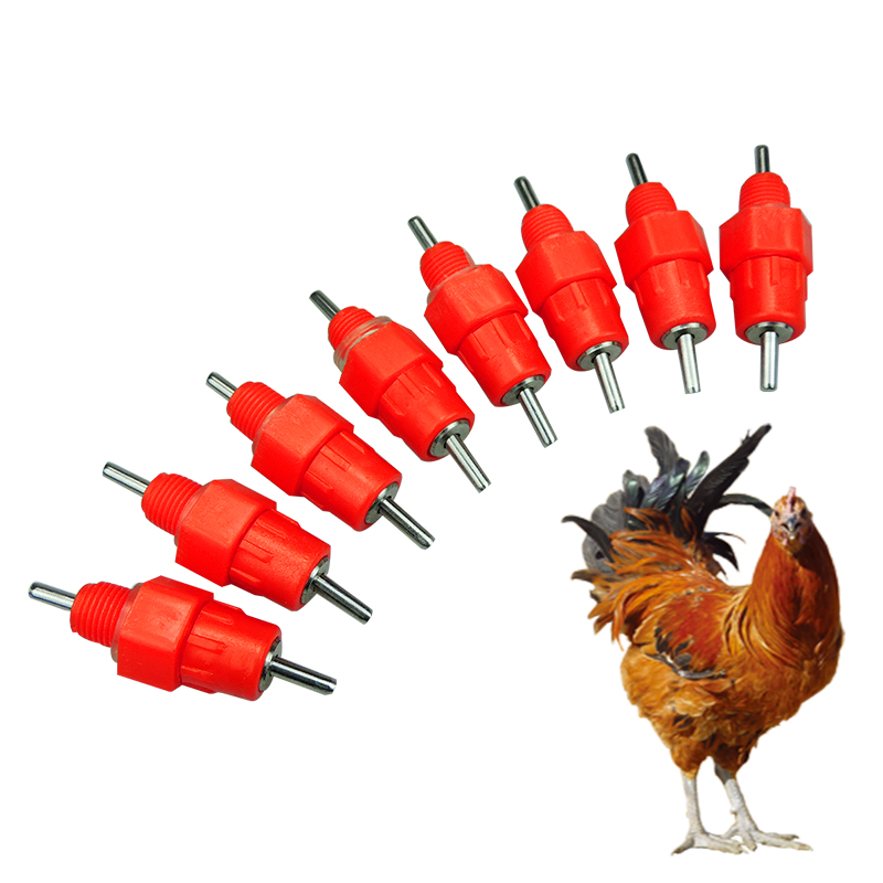 Image 1 - 100 pcs Poultry Chicken Drinker Nipples Automatic Waterers Bird Hen Feeding Ball Type Screw Nipple Drinkers for chicken FarmFeeding & Watering Supplies   -
