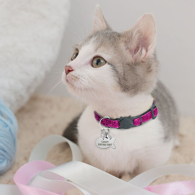 Cat's Glitter Collar with Customized ID Tag