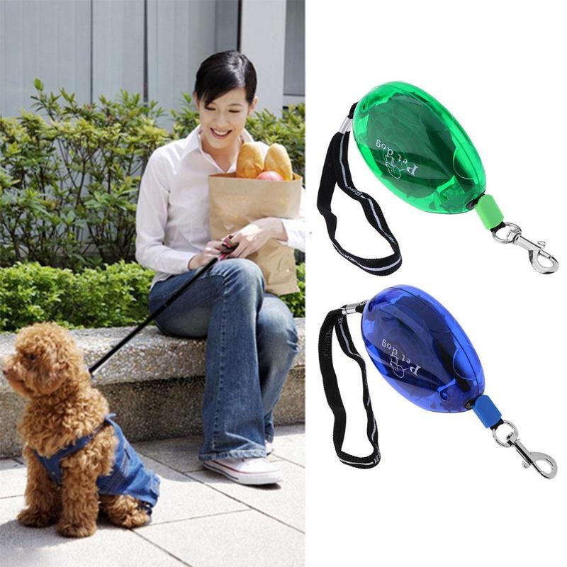 Home & Garden 5m Flower Jogging Retractable Cat Leashes Automatic Puppy Traction Rope Walking Dog Training Leash For Small Medium Pet Products