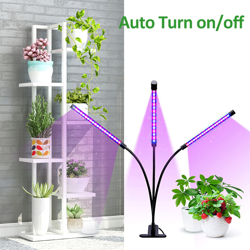 Indoor LED Grow Light Fitolampy 9/18/37W Phyto Lamp For Plants Timer With Controller Light For Plant Desk Flower Grow Led Lights