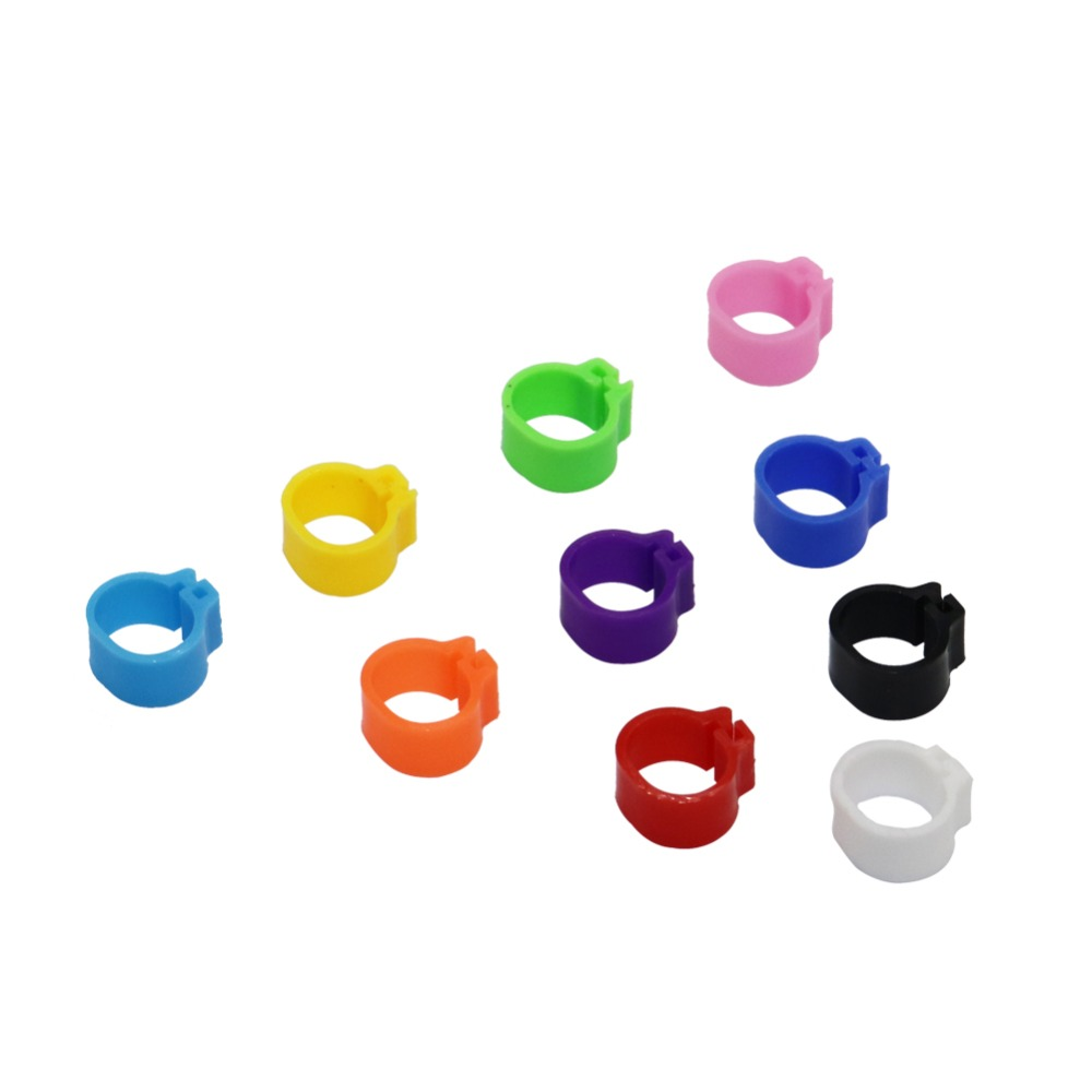100 pcs Diâmetro Interno 8MM 10MM Pássaro Grampo Plástico Anéis Anel 10 Cores Suprimentos Pombo Pombo Pé Colorido
