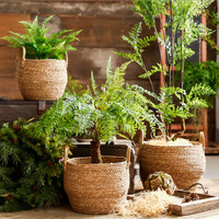 cestos decoration Planter Pot Woven Flower Fruit Basket with Handles Wedding Easter Straw Seagrass Plant Basket Baskets