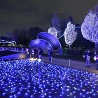 Wedding Party 4 6M 672 LED Net Lights LED Giant Fairy Light Christmas Decoration X Mas