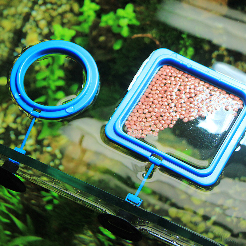 Aquarium grass tank fish feeding square round ring feeder for Fish feeding ring