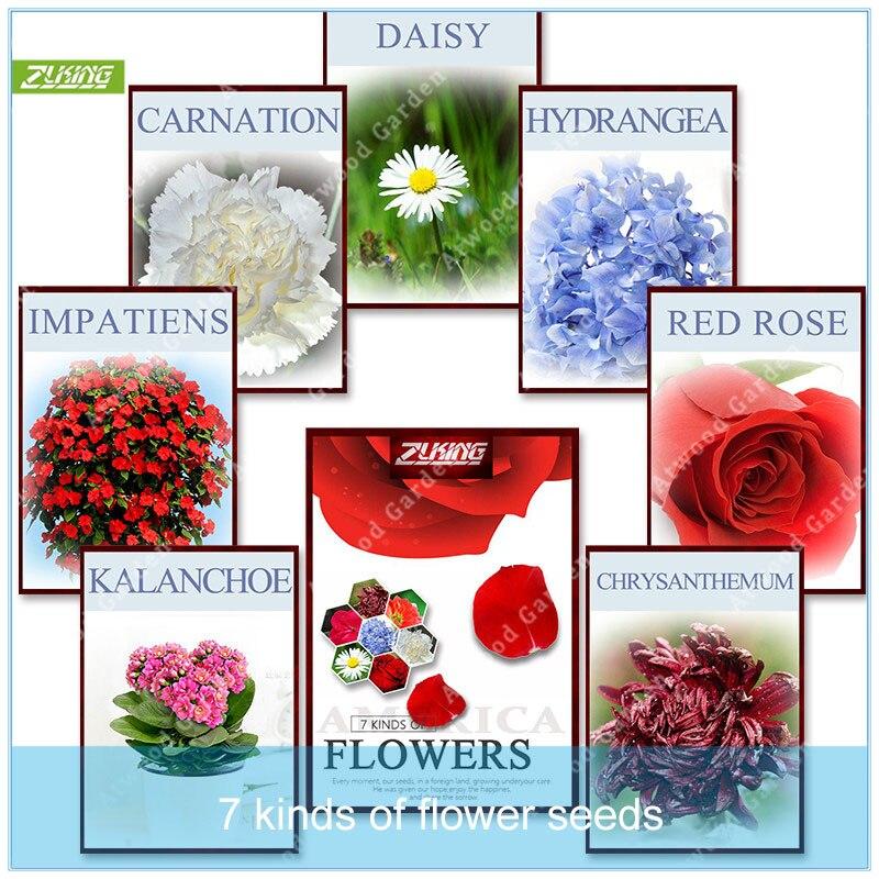 ZLKING 310pcs Mixed Packaging Flowers  Bonsai Fragrant Popular Perennial Plants Rare Flower  Mix Indoor Home Garden