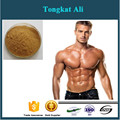 Tongkat Ali 100:1 Extract Powder 200g - Genuine Indonesian Pure Root Extract
