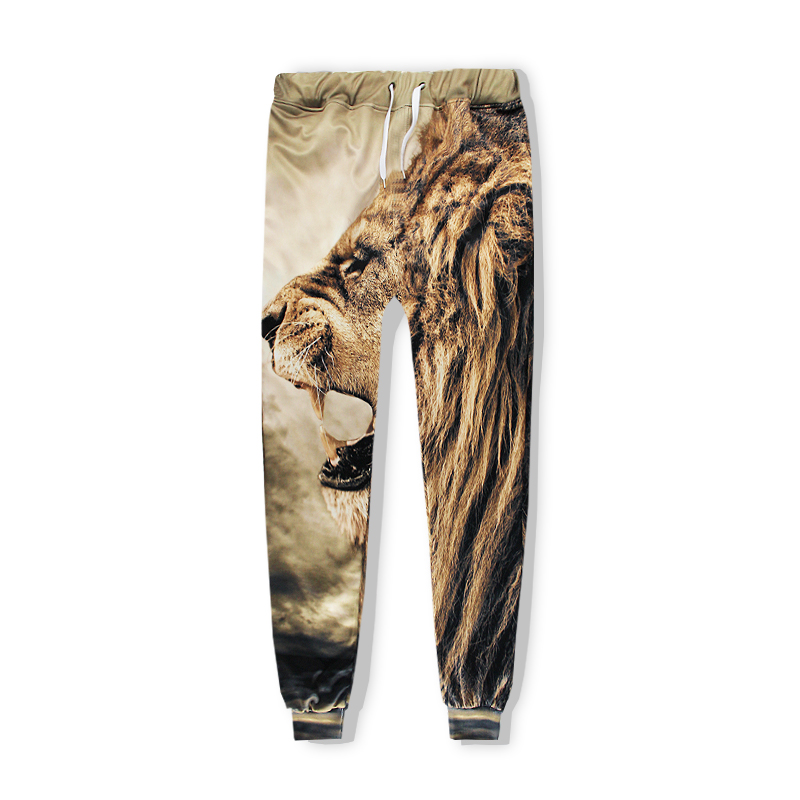 Autumn Mens hoodies sweatshirt funny Animal Lion 3D All Over Print fashion Brand clothing men women hoodie joggers pants in Hoodies amp Sweatshirts from Women 39 s Clothing