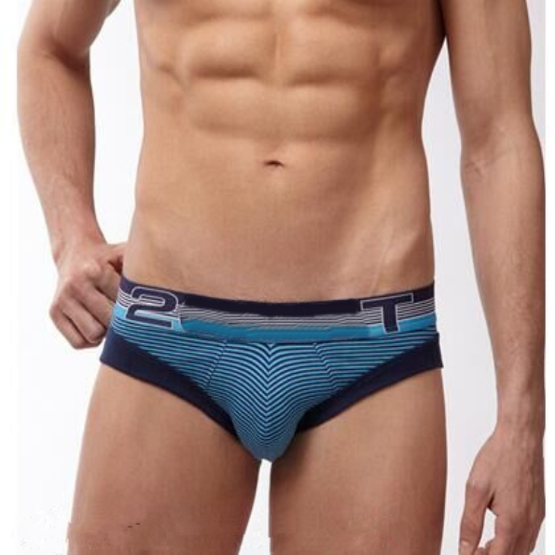 Free Shipping  Male Panties Sail Sculpted Cotton Briefs Men's Underwears