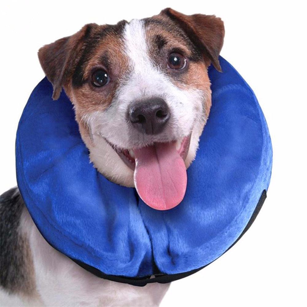 Inflatable-Pet-Collar-Health-Dog-Cat-Vet-Approved-Elizabethan-Wound-Healing-Protection-Medical-Cone-Collar (1)