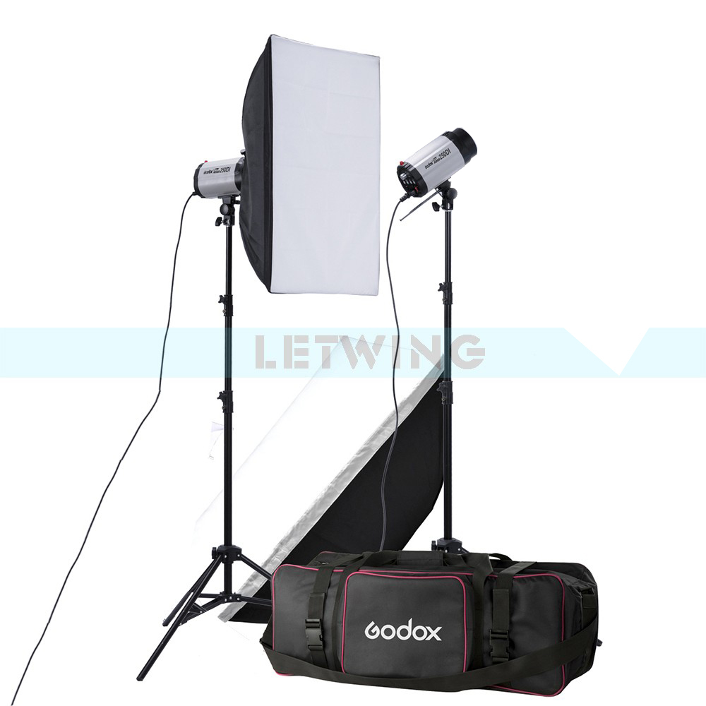 Godox 2X 250W Studio Flash Lighting Kit 500W Strobe Flash Light Portrait Fashion Advertisement Object Photography Set