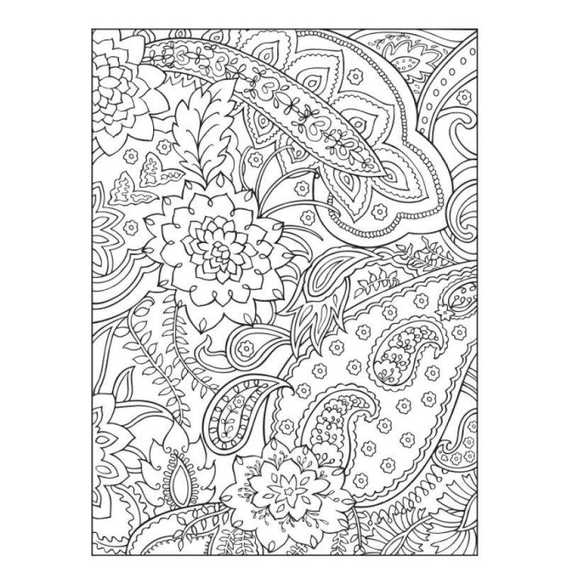 HOT!Dover Coloring Book: Paisley Designs Coloring Book For Adults ...